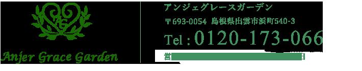 0120-173-066
